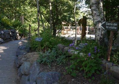 sentier-terra-alta-cap-guery-jardin-botanique